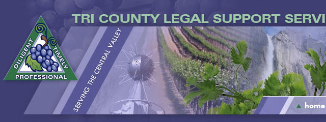 Tri County Legal Support Custom Website by Adriana Shmahalo